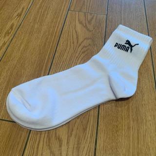 ナイキ(NIKE)のプーマ 靴下(その他)
