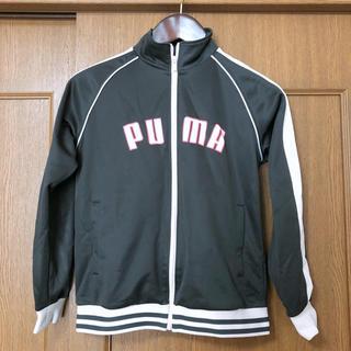プーマ(PUMA)のPUMA ジャージ上下セット(セット/コーデ)