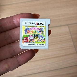 ニンテンドー3DS(ニンテンドー3DS)のたまごっち 3DS(家庭用ゲームソフト)