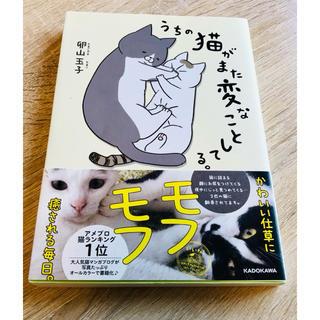 うちの猫がまた変なことしてる。①巻(4コマ漫画)