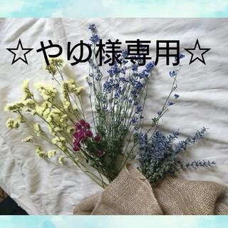 ☆やゆ様専用 ☆ドライフラワー 花束(ドライフラワー)