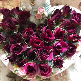 新発売!ミニ薔薇 濃いピンク ドライフラワー★20輪セット+おまけ2輪付き(ドライフラワー)