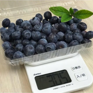 『初物』朝摘み中粒ブルーベリー(生食用) 600g(フルーツ)