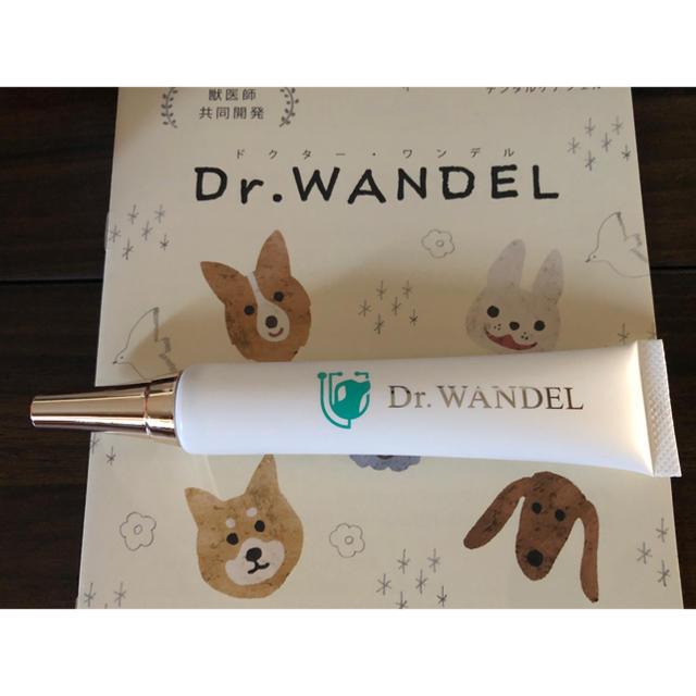 ワンデル ドクター
