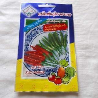 プリッキーヌ 激辛トウガラシ タイの唐辛子の種(15粒)(野菜)