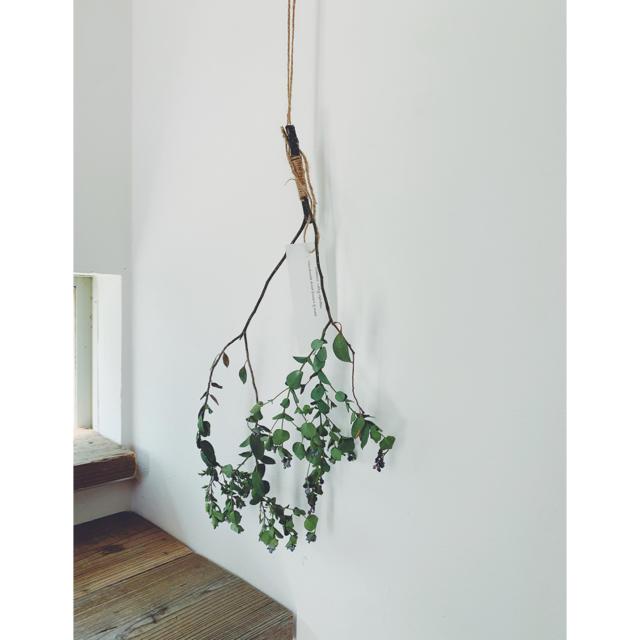 ミモザとワイヤープランツのツインリース、デイジーとユーカリ一本枝スワッグQ ハンドメイドのフラワー/ガーデン(ドライフラワー)の商品写真