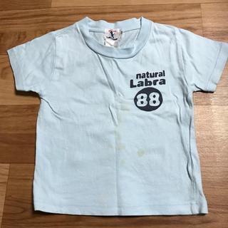 ラブラドールリトリーバー(Labrador Retriever)のTシャツ☆110(Tシャツ/カットソー)