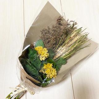 フランフラン(Francfranc)のフランフランで購入★ドライフラワー 黄色 イエロー グリーン 花 ミモザ 花束(ドライフラワー)