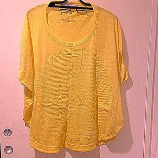 アディダスバイステラマッカートニー(adidas by Stella McCartney)のAdidas Stella McCartney Tシャツ Sサイズ 美品(その他)