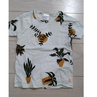 ボボチョース(bobo chose)のタイニーコットンズ ベビーTシャツ(Tシャツ)