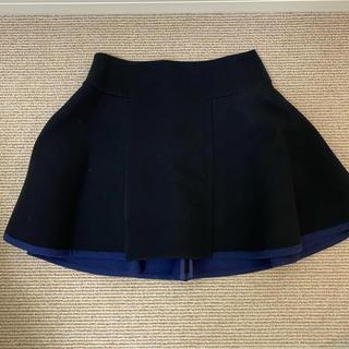 サカイラック(sacai luck)のsacai luckスカート(ミニスカート)