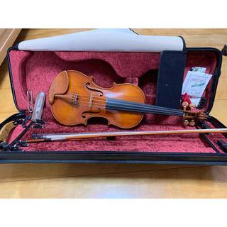 バイオリン 一式 DERIUS x 8012 pygmalius(ヴァイオリン)