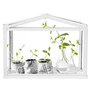 イケア(IKEA)のSOCKER ソッケル IKEA お部屋で温室 新品未開封(プランター)