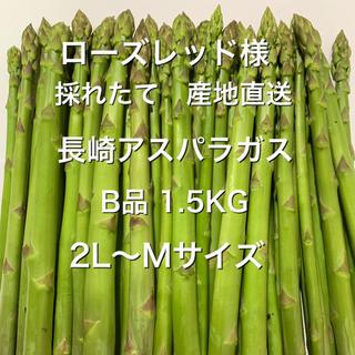 ローズレッド様 B品 1.5KG(野菜)