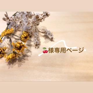 ニューバランス(New Balance)の🍒様専用 ✴︎new balance デイパック✴︎(リュック/バックパック)