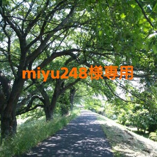 キワセイサクジョ(貴和製作所)のmiyu248様専用(各種パーツ)