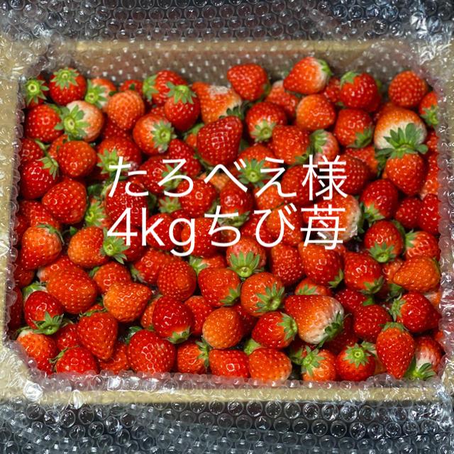 ジャム用ちび苺●さがほのか4kg●いちご苺イチゴ●クール便 食品/飲料/酒の食品(フルーツ)の商品写真