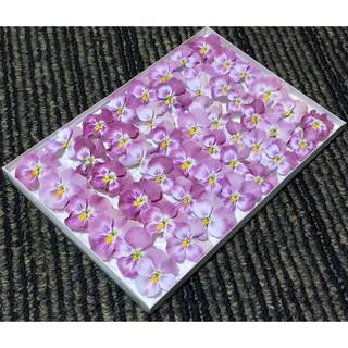 お花屋さんが作った桜ピンクのビオラのドライフラワーお詰め合わせ(ドライフラワー)