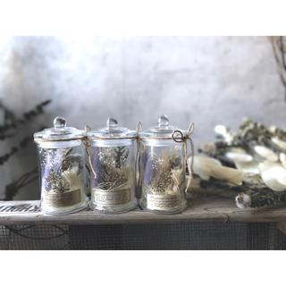キャニスターボトル瓶入りドライフラワーMサイズ*植物標本//パープル(ドライフラワー)