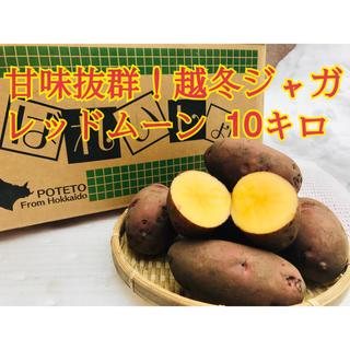 ●越冬 じゃがいも レッドムーン ●10キロ ●北海道 ジャガイモ(野菜)