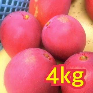 宮崎県産 完熟マンゴー 自家用 4~4.3kg(フルーツ)