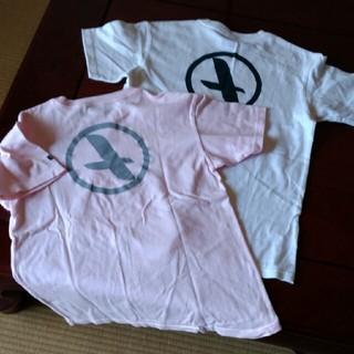 エーグル(AIGLE)のAIGLE カットソー(Tシャツ/カットソー(半袖/袖なし))