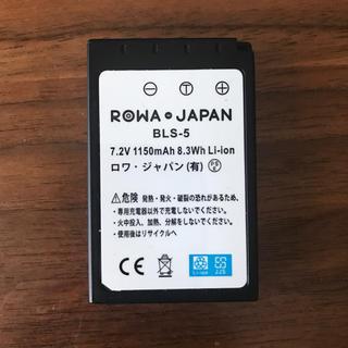 ロワジャパン 電池パック (バッテリー/充電器)