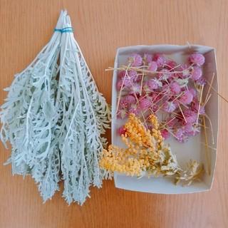 ドライフラワー花材いろいろセット☆(ドライフラワー)