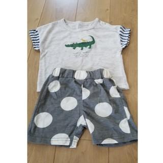 シマムラ(しまむら)の新品☆男の子上下セット 80cm(Tシャツ)