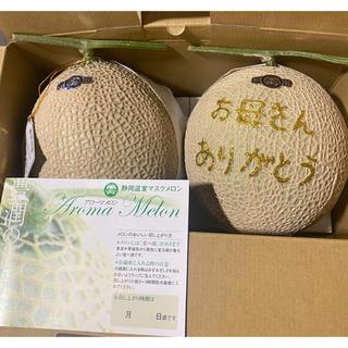 天狗様専用  母の日限定 静岡アールスメロン2玉&サンゴールドキウイ(フルーツ)