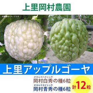 0712 【HS6SS6】上里岡村農園寅さんのアップルゴーヤのタネ2種類セット(野菜)