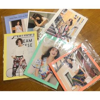 チェスティ(Chesty)の新品 Chesty チェスティ ♡ カタログ6冊セット(ファッション)