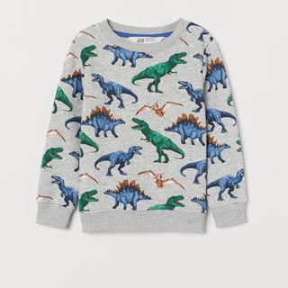 エイチアンドエム(H&M)の新品タグあり H&M  怪獣 ダイナソー スウェットシャツ 90(ニット)