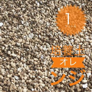 最高品質 多肉 観葉植物 1リットル 培養土 オレンジ 送料無料 即購入歓迎(その他)