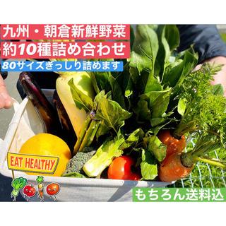 【大好評👏】九州*朝倉農家直送野菜詰合せ(野菜)
