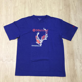 マーモット(MARMOT)のMarmot  メンズTシャツ(Tシャツ/カットソー(半袖/袖なし))