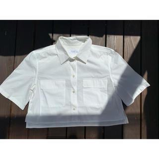 エキプモン(Equipment)のAP STUDIO EQUIPMENT  ショート丈シャツ(シャツ/ブラウス(半袖/袖なし))