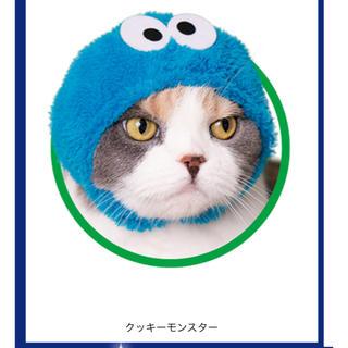 セサミストリート(SESAME STREET)の猫被り物 クッキーモンスター(猫)