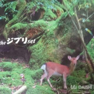 最終値下げ❗ the ジブリ set DD DAISHI DANCE CD(クラブ/ダンス)