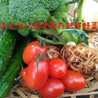 おまかせ13〜15種類!新鮮野菜100サイズ詰め合わせ 春野菜旬の美味しい九州産(野菜)