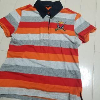ニジュウサンク(23区)の1度着用のみ 23区  ポロシャツ 日本製(Tシャツ/カットソー)