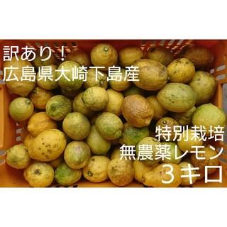 訳あり!広島県大崎下島産 特別栽培無農薬レモン 3キロ(フルーツ)