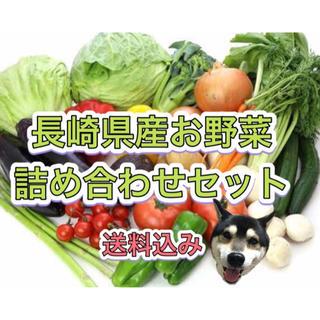 長崎県産 新鮮 野菜 詰め合わせセット(野菜)