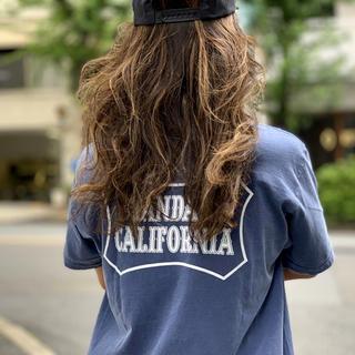 STANDARD CALIFORNIA - 最終値下 standard California スタンダードカリフォルニア