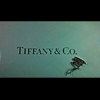 ティファニー(Tiffany & Co.)のTIFFANY・Paloma Picasso Scribble Brooch(ショルダーバッグ)