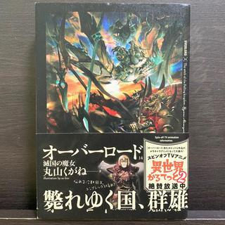 カドカワショテン(角川書店)のオーバーロード 14(文学/小説)