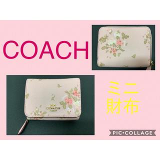 コーチ(COACH)のCOACH(コーチ)❤︎ミニ財布 ✴︎91752❤︎ピンク花柄❤︎お値打ち!(財布)