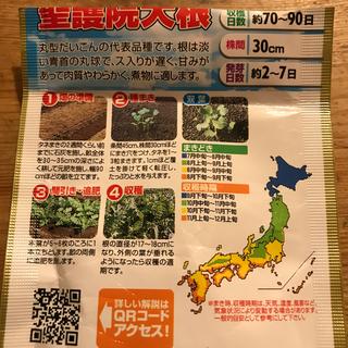 ちるる様確認用  野菜の種 5種類(野菜)