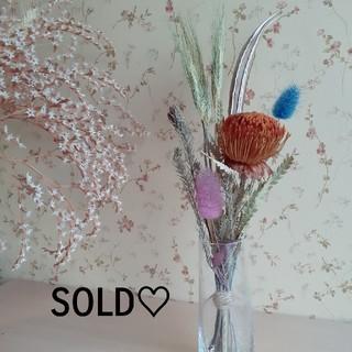 Thank You Sold Out!!!  *.ドライアンドラのスワッグ.*(ドライフラワー)