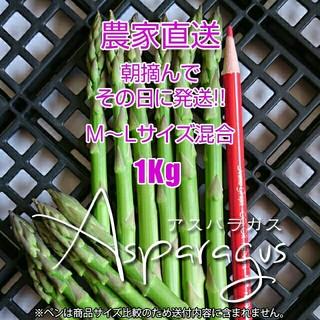グリーンアスパラ 1kg アスパラガス 新鮮野菜(野菜)